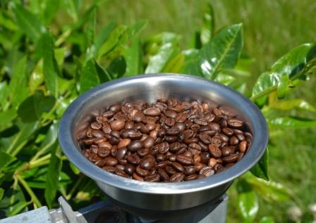 Dutch Coffee - the right coffee beans